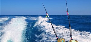 Fishing in The Maldives with Indian Ocean Charters