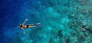 Snorkeling in The Maldives with Indian Ocean Charters